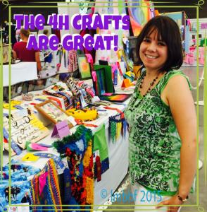 4H Crafts