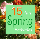 Things to Do in Springtime