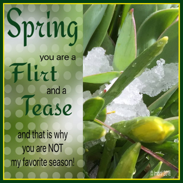 Spring, You're a Flirt and a Tease!