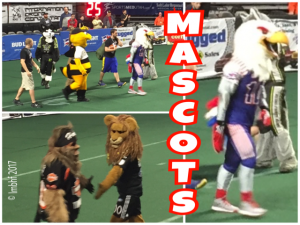 Mascots at the Football Game!